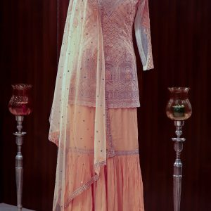 Ajara women peach embroidered net kurta and georgette garara)img